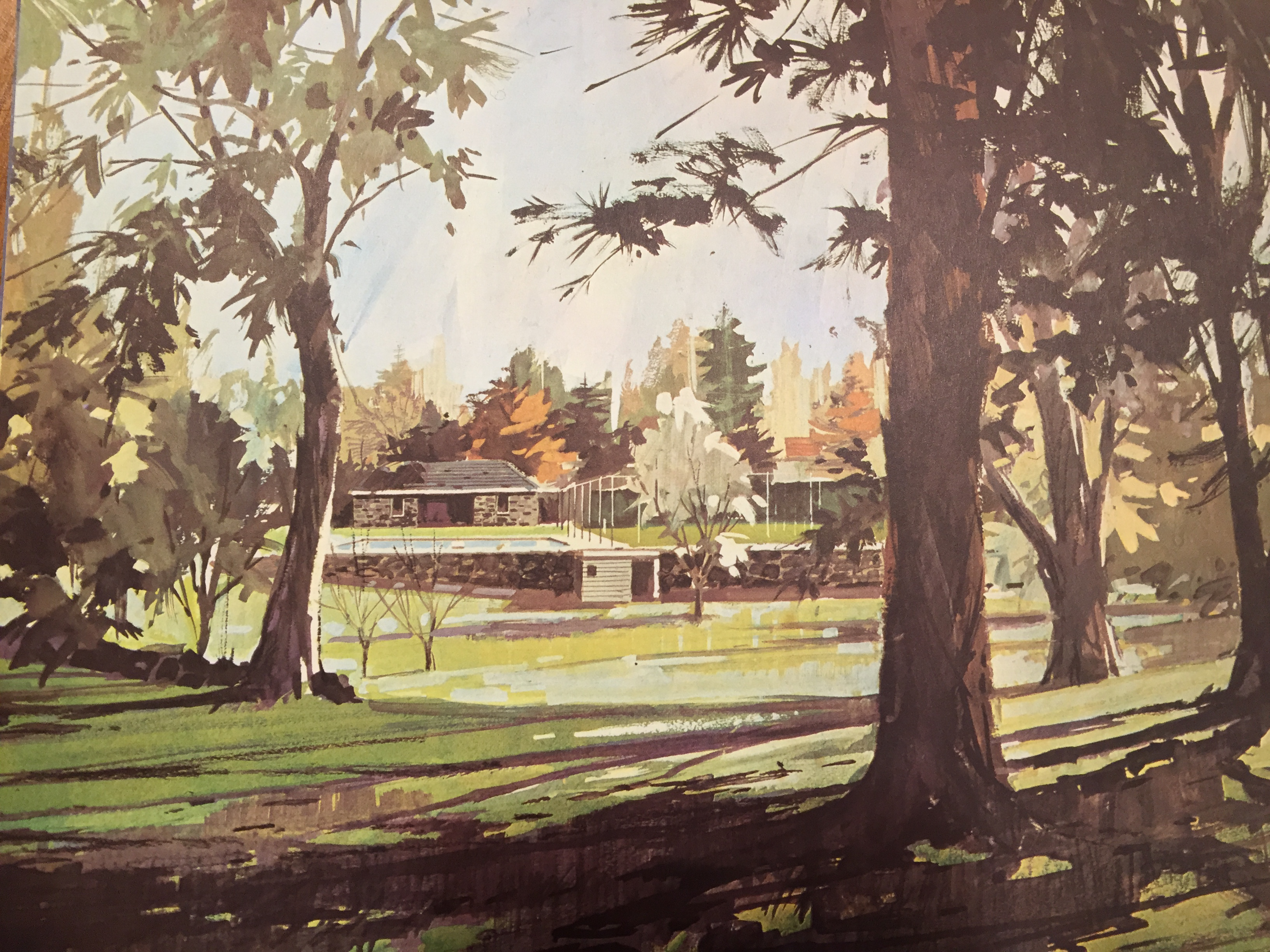 An image of the garden from the 1971 brochure advertising the Pines apartments. This shows the pool area before the current pavilion was built and other changes to the garden.